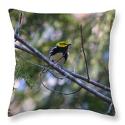 Spring Black-throated Green Warbler Throw Pillow