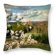 Spring Time Throw Pillow by Robert Bales