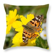 Springtime In Hydra Island Throw Pillow