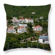 St Thomas Usvi Throw Pillow