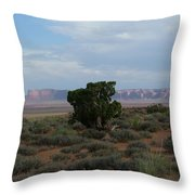 Still Life In The Desert Throw Pillow