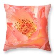 Stockton Rose Throw Pillow