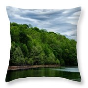 Stonewall Jackson Lake Wildlife Management Area Throw Pillow