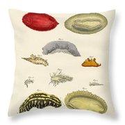 Strange Molluscs Throw Pillow