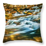 Stream Fall Colors Great Smoky Mountains Painted  Throw Pillow