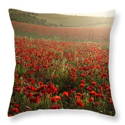 Stunning Poppy Field Landscape Under Summer Sunset Sky Throw Pillow
