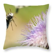 Summer Flowers On Meadow Throw Pillow