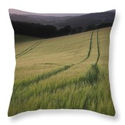 Summer Landscape Image Of Wheat Field At Sunset With Beautiful L Throw Pillow