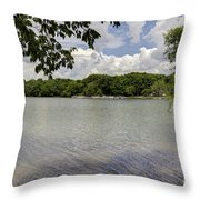 Summer Time At Moraine View State Park Throw Pillow