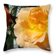 Summer's  Rose Love Throw Pillow