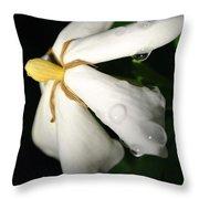 Sun Kissed Gardenia Throw Pillow