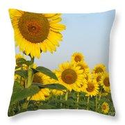 Sunflower Series Throw Pillow