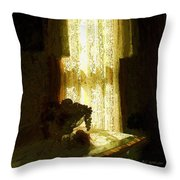 Sunlight Through Lace Throw Pillow