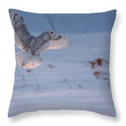 Sunlit Wings Throw Pillow