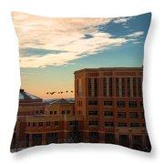 Sunrise Flyby Throw Pillow