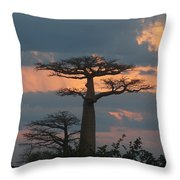 sunset in Madagascar Throw Pillow