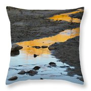 Sunset Reflected In Stream, Arizona Throw Pillow