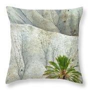 Tabernas Desert Throw Pillow