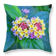Talented Throw Pillow