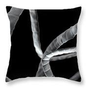 Tapeworm Cestoda Throw Pillow