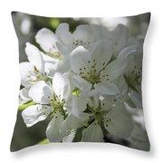Tea Crabapple Throw Pillow