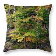 Tennessee Autumn Stream Throw Pillow