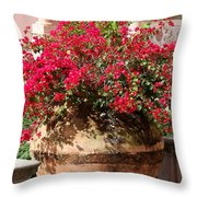Terracotta Pot Throw Pillow