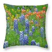 Texas Wildflowers Throw Pillow