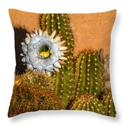 The Argentine Giant  Throw Pillow