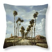 The Avenue At Middelharnis Throw Pillow