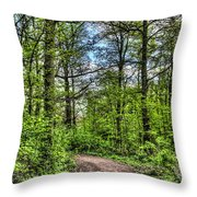 The Forest Path Throw Pillow
