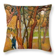 The Garden Of Saint Paul's Hospital Throw Pillow