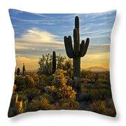 The Golden Southwest  Throw Pillow