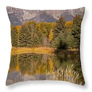 The Grand Tetons Schwabacher Landing Grand Teton National Park Throw Pillow