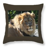 The King Of The Jungle Throw Pillow
