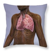 The Lungs And Cardiovascular System Throw Pillow