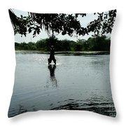 The Pantanal Throw Pillow