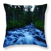 The Paradise River Throw Pillow
