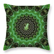 The Rains Have Come Throw Pillow