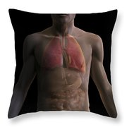 The Respiratory And Digestive Systems Throw Pillow