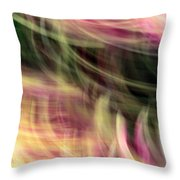 The Separation Throw Pillow