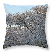 The Simple Elegance Of Cherry Blossom Trees Throw Pillow