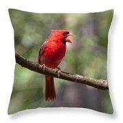 The Singing Cardinal Throw Pillow