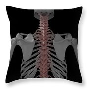 The Spine Throw Pillow