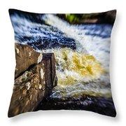 The Stream In Mountain Throw Pillow