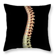 The Thoracic Vertebrae Throw Pillow
