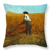 The Veteran In A New Field Throw Pillow