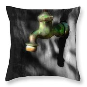 The Years Have Gone Throw Pillow