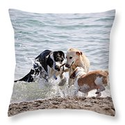 Three Dogs Playing On Beach Throw Pillow