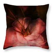 Time Of Roses Throw Pillow